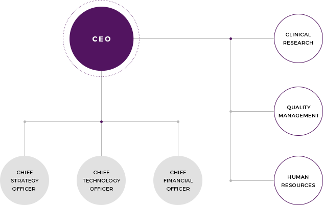 Olive Healthcare's organization chart
